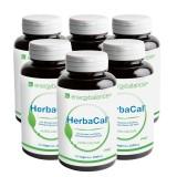 HerbaCal calcio da alghe Nr.1 - confezione trattamento 6 mesi