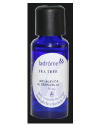 Tea Tree - Teebaum Bio ätherisches Öl 30ml