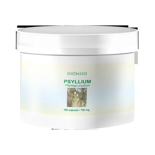 Flohsamenkraut Psyllium 600mg, 100 VegeCaps