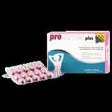 Nr. 1 ProCurves Plus mit BioPerine, 60 Tabs