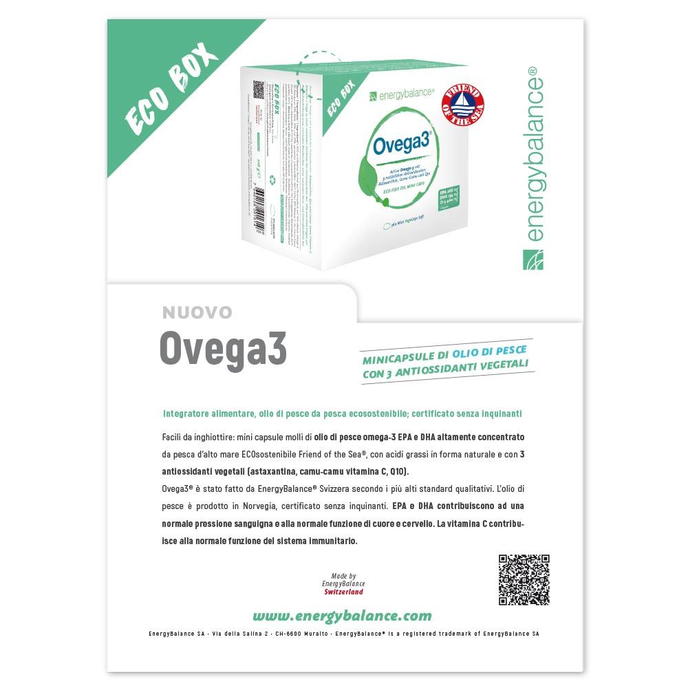 Info Ovega3 IT